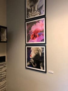 Installation view of three Hair Photographs, Salon Rocco, New Jersey, 2019-2020