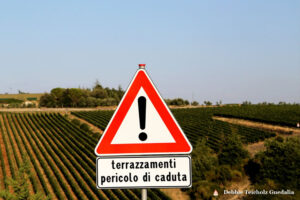 Red and White Italian Danger Sign in Italian Vineyards, Tuscany, Italy